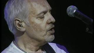 PETER FRAMPTON  Lines On My Face 2011 LiVE