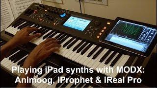 Using the MODX with the iPad (Animoog | iProphet | iRealPro)