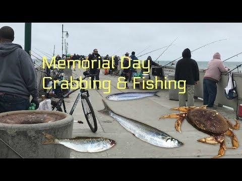Memorial Day Fishing and Crabbing ( Pacifica Pier )