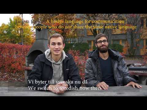 Polyglot Interview between Erik and Patrick in Stockholm