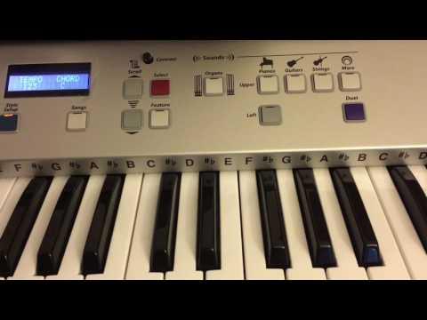 Review Of Lowery EZ2 Organ By Garysdeskcom