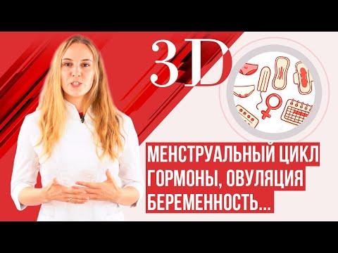 Менструальный цикл, гормоны, менструация. Лучшее видео.