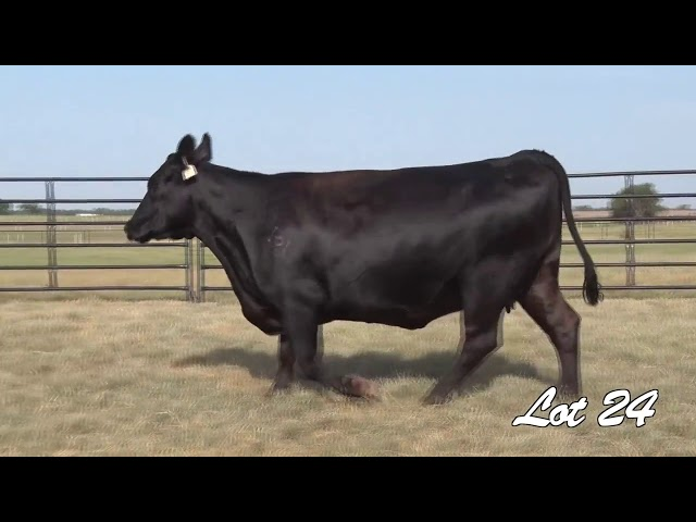 Pollard Farms Lot 24