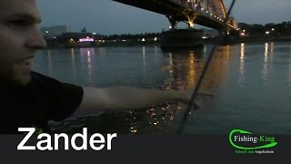 Zander-Angeln Teil 2: Wie finde ich die beste Stelle? | Fishing-King.de