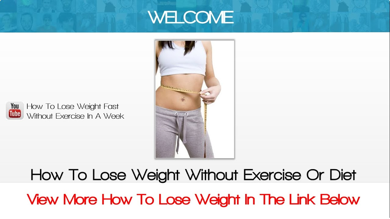 process essay how to lose weight Blog Archive