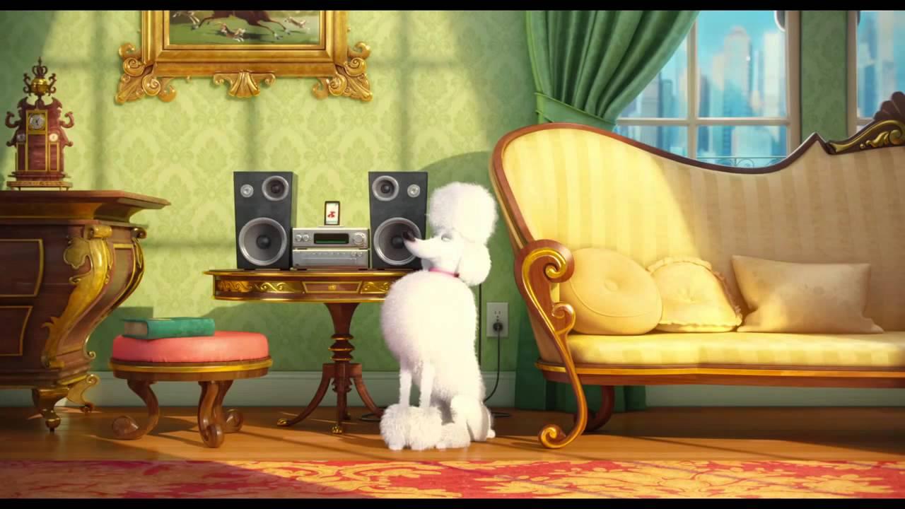 The Secret Life of Pets HEAVY METAL Poodle dog rock - YouTube