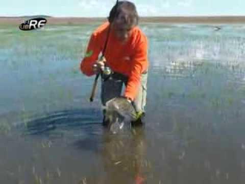 Tararira Gigante, Pesca deportiva Embalse India Muerta, Rocha Uruguay parte 2