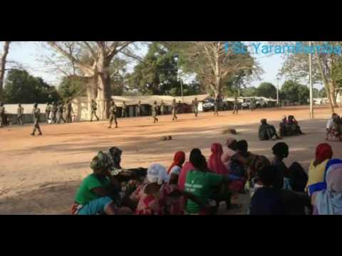 Gambia: Latest Updates & Analysis On Kanilai