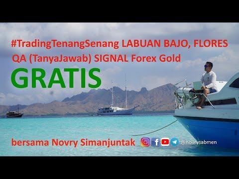 vlog-#tradingtenangsenang-labuan-bajo-flores-&-tanya-jawab-signal-gratis-forex-gold