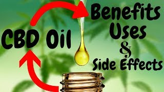 7 Benefits I Uses I And I Side Effects of CBD Oil