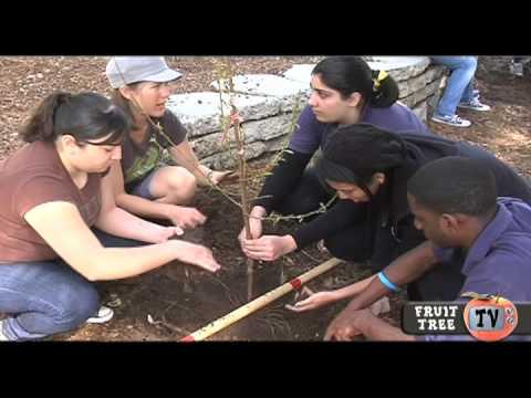 LA High School Heroes    Fruit Tree TV 2010  Episode 4