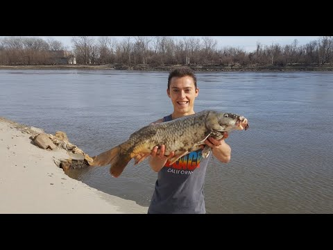 How To Bank Fish Missouri River - Catfish, Carp, Sturgeon