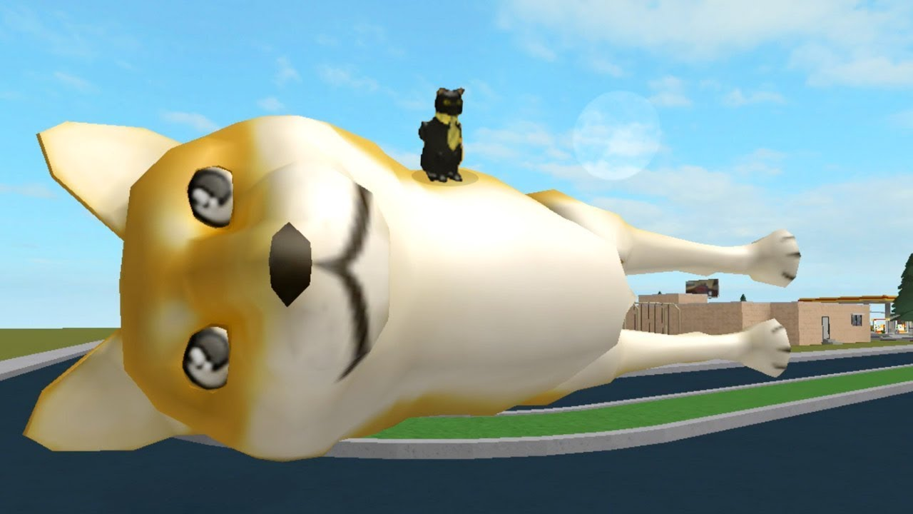 Roblox Animated Sir Meows A Lot