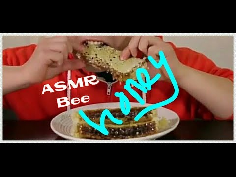 asmr--eating-sounds--honey-bee