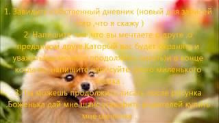 Как уговорить родителей купить собаку(, 2013-01-10T22:14:30.000Z)