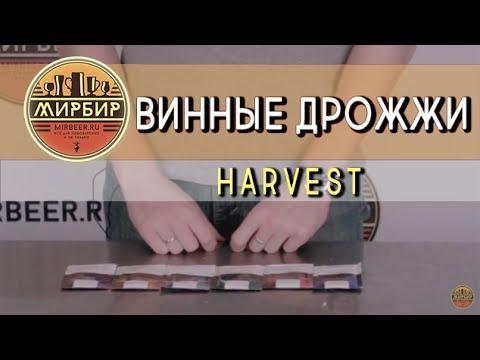 Мы специализируемся на продаже бентонита для гнб, полимеров и химических. Тм «баулюкс» в санкт-петербурге и москве. Хотите купить бентонит?