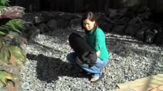 Modular Raised Bed Square Foot Organic Gardening