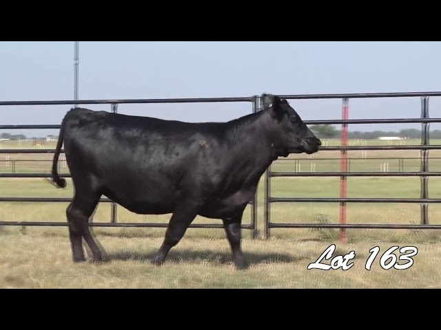 Pollard Farms Lot 163