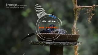 Arabesque (The Distance Remix) - Can Sezgin Feat  Dilara