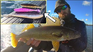 How To Fish PLAŠTICS to Catch MORE Fall Walleyes!