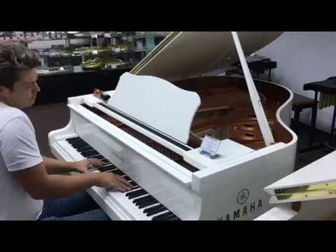Amazing pianist in music store