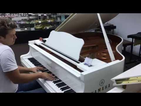 Amazing pianist in music store!