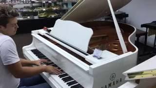 Gambar cover Amazing pianist in music store!
