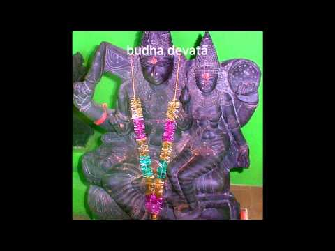 Navagraha Suktam: Vedic Shanti Mantras for the Nine Planets