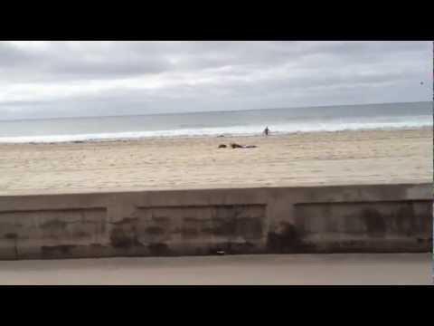 Pacific Beach Boardwalk, California