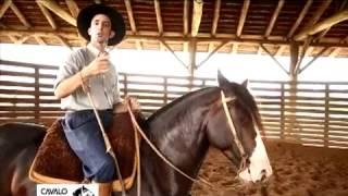 Como faço para meu cavalo virar?