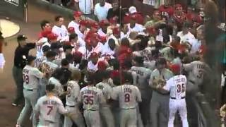 Cardinals vs Reds fight