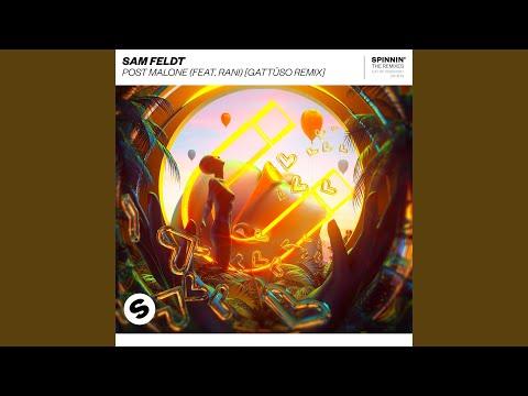 Post Malone (feat. RANI) (GATTÜSO Remix)