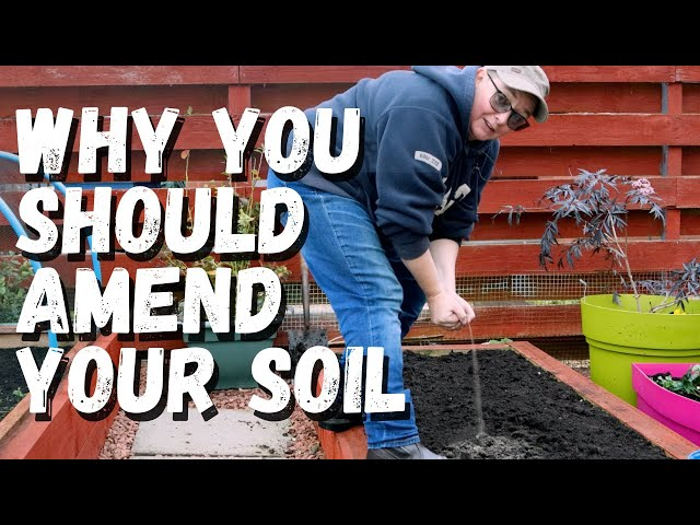 Why you should revitalise your garden soil | raised beds and container gardening