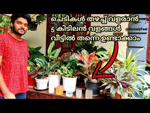 5 Home Made Organic Fertilizers for Growth Boosting of Our Plants in Malayalam By Diyab