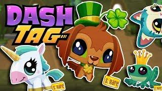 Tagging 75 Pets on Dash Tag   Dash Tag Endless Runner Game