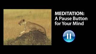OSHO: Meditation - A Pause Button for Your Mind