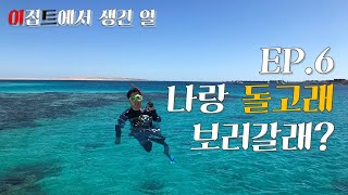 돌고래랑 수영하기 in 홍해 (feat. 프리다이빙)