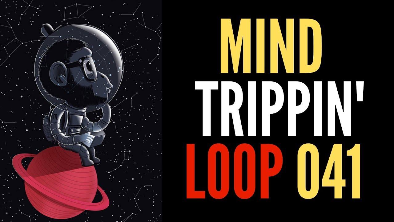 *FREE LOOP* #041 - SAMPLE PACK FREE DOWNLOAD, FREE LOOP KITS, FREE MELODY  LOOPS
