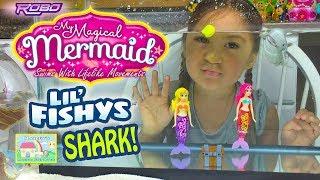 Amazing Magical Mermaids vs Shark in Aquarium | Bath Toys