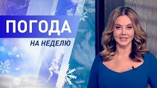 Погода на неделю 15 – 21 февраля 2021. Прогноз погоды. Беларусь | Метеогид