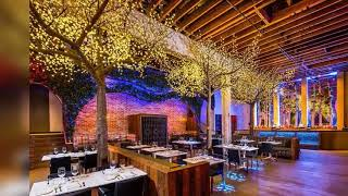 World best restaurant interior design Restaurant dining area design