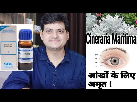 Homeopathic medicine Cineraria MaritimaFor eye problems and vision defects ? use and symptoms