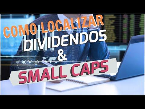 Ações Small Caps e Dividendos, Como EU faria para estudar