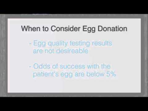 Egg Donation & Surrogacy - Beverly Hills, Burbank, Valencia