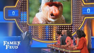 Monkey business on the Feud!!! | Family Feud