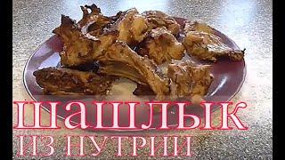 Шашлык из нутрии такого вы еще не ели Как приготовить шашлык Маринад для шашлыка Готовим мясо