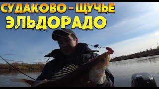 Закрытие сезона Осенняя рыбалка Силикон на судака Еще не зимняя рыбалка Совсем не первый лед
