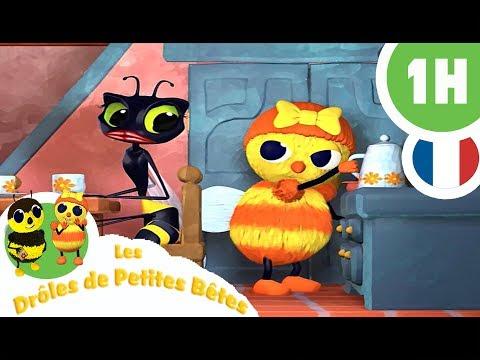 DRÔLES DE PETITES BÊTES - 1 Heure - Compilation #03