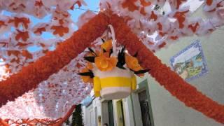Festa da Flor  Campo Maior 2011