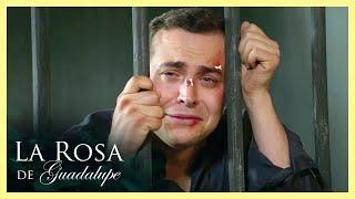 La Rosa de Guadalupe: Las cosas se salen de control para Nestor   El centro de tu vida
